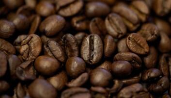 Kaffe, kaffebønner foto fra Pixabay.com